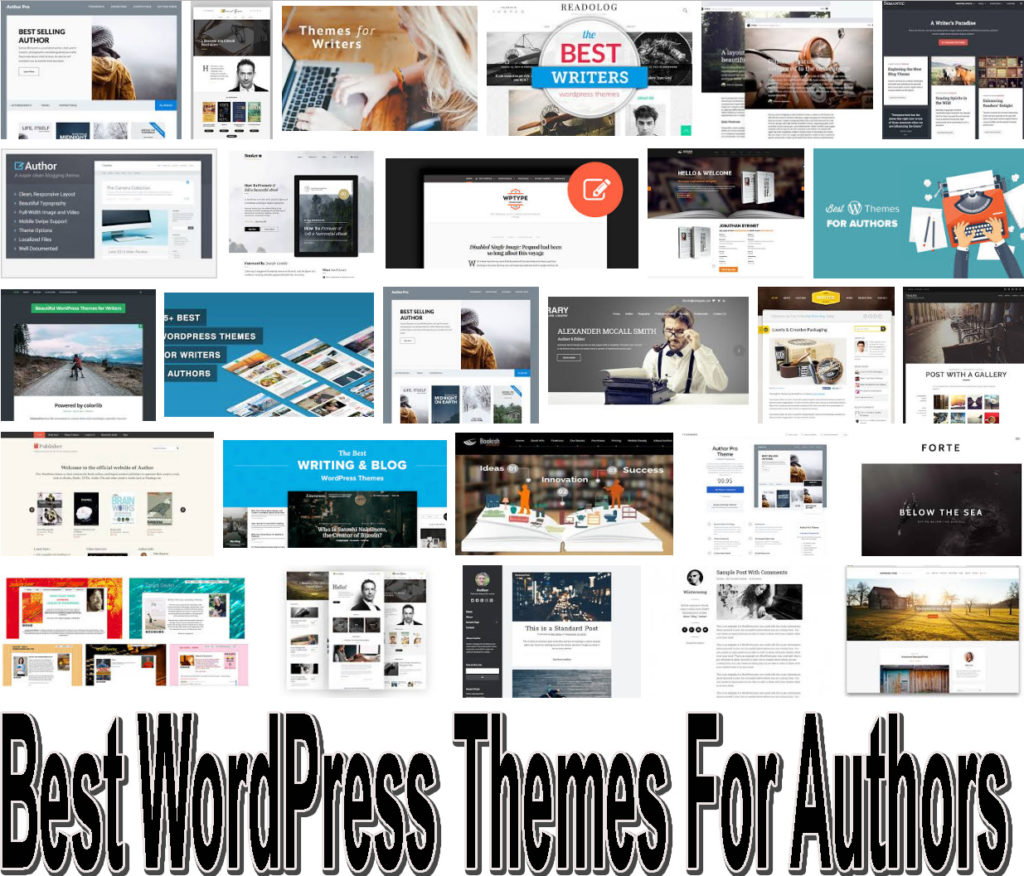 10 Best WordPress Themes For Authors