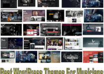 20+ Best WordPress Themes For Musicians